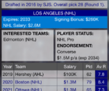 Hockey Agent